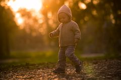 прогулка парка Стоковое фото RF