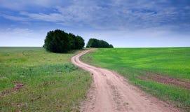 прогулка поля Стоковое Изображение