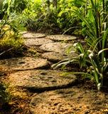 прогулка сада Стоковые Фото
