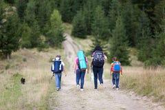 Прогулка семьи с рюкзаками от задней части Стоковое фото RF