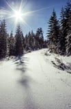 Прогулка снега Стоковая Фотография