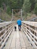 прогулка собаки Стоковое фото RF