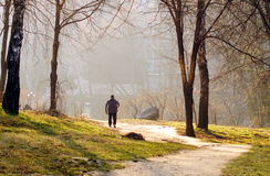 Прогулка утра в парке с собакой на день весны солнечный Стоковая Фотография RF