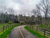 Прогулка через парк Стоковая Фотография