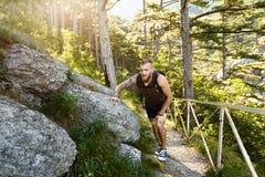 Прогулка Hikers на asunny следе леса горы Стоковая Фотография
