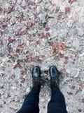 Прогулка Leavy Стоковая Фотография