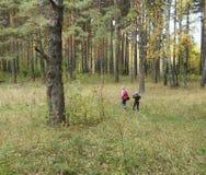2 прогулки детей в лесе осени Стоковые Изображения RF