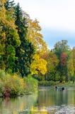 Прогулки на яхте через озеро среди леса осени Стоковые Изображения RF