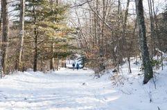 Прогулочные коляски на снежном пути Стоковые Фото