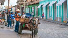 Продавец ананаса в улице Кубе Тринидада Стоковые Фотографии RF