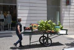 Продавец фрукта и овоща Стоковая Фотография