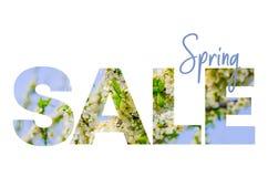 Продажа весны рабаты Плакат концепции, знамя, реклама Драгоценная бумага отрезала с реальным цветя садом абрикоса иллюстрация вектора