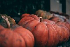 Продажа тыквы в маленьком городе стоковое изображение rf