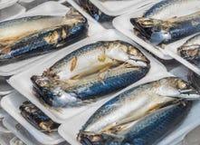 Продают мясо тунца в пакетах Стоковое фото RF