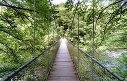 Продольный взгляд висячего моста и веревочка на реке e Стоковые Изображения RF