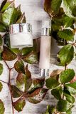 Продукты бутылки курорта косметические на белых деревянных листьях предпосылки и зеленого цвета предусматриванных в падениях свеж Стоковое фото RF