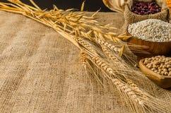 продукты, зерна и хлопья земледелия Стоковая Фотография RF