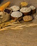 продукты, зерна и хлопья земледелия Стоковые Фото