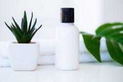 Продукты и косметики здоровья Травяное и минеральное skincare Ja Стоковое Изображение RF