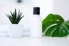 Продукты и косметики здоровья Травяное и минеральное skincare Ja Стоковое Изображение