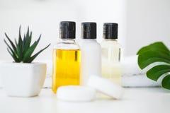 Продукты и косметики здоровья Травяное и минеральное skincare Ja Стоковая Фотография RF