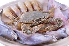 продукты моря диска стоковое фото