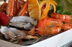 продукты моря диска стоковые изображения