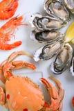 продукты моря плиты Стоковая Фотография RF