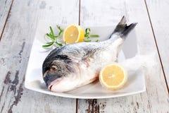 Продукты моря. Свежие рыбы на белой плите. стоковые фотографии rf