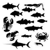 продукты моря собрания Стоковые Изображения RF