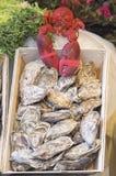 продукты моря Стоковое Изображение RF