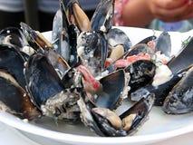 продукты моря стоковая фотография