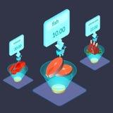 Продукты питания на иллюстрации дисплея равновеликой иллюстрация штока