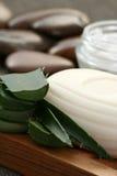 продукт vera холить алоэ Стоковое Фото