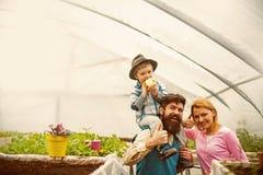 Продукция запуска продукция запуска дела концепция продукции запуска продукция запуска счастливой семьи внутри стоковое фото