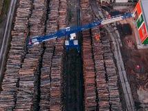 Продукция лесопилки обработки древесины, кранов стоковая фотография
