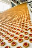 продукция фабрики печенья Стоковое Фото