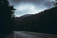 Проезжая часть природы тумана леса горы стоковые фото