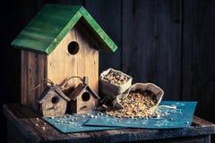 Проект малых фидера и плана строительства птицы Стоковая Фотография RF