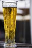 проект пива угла более плотный Стоковые Фотографии RF