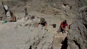 Проект Noviodunum археологический видеоматериал