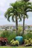 Прожитие квартиры озера пальма стоковые изображения