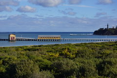 Прожитие моря Стоковое фото RF