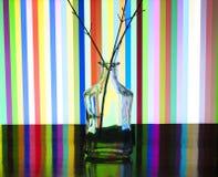 Прозрачная бутылка и введенная ветвь Стоковые Фото