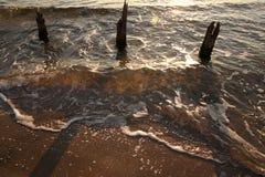 Прозрачная волна Стоковое Изображение RF