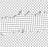 Прозрачная горизонтальная сорванная наслоенная бумага, бумага листа, сорванный бумажный вектор бесплатная иллюстрация