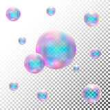 Прозрачные реалистические пузыри мыла Изолированный вектор иллюстрация вектора