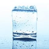 Прозрачный куб льда с отражением на белизне Стоковые Изображения RF