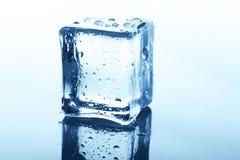 Прозрачный куб льда с отражением на синем стекле с водой падает Стоковая Фотография