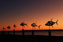 Произведения искусства и восход солнца рыб Стоковые Фото
